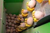 Masina de plantat cartofi Miedema
