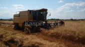 Combina New Holland TX 36